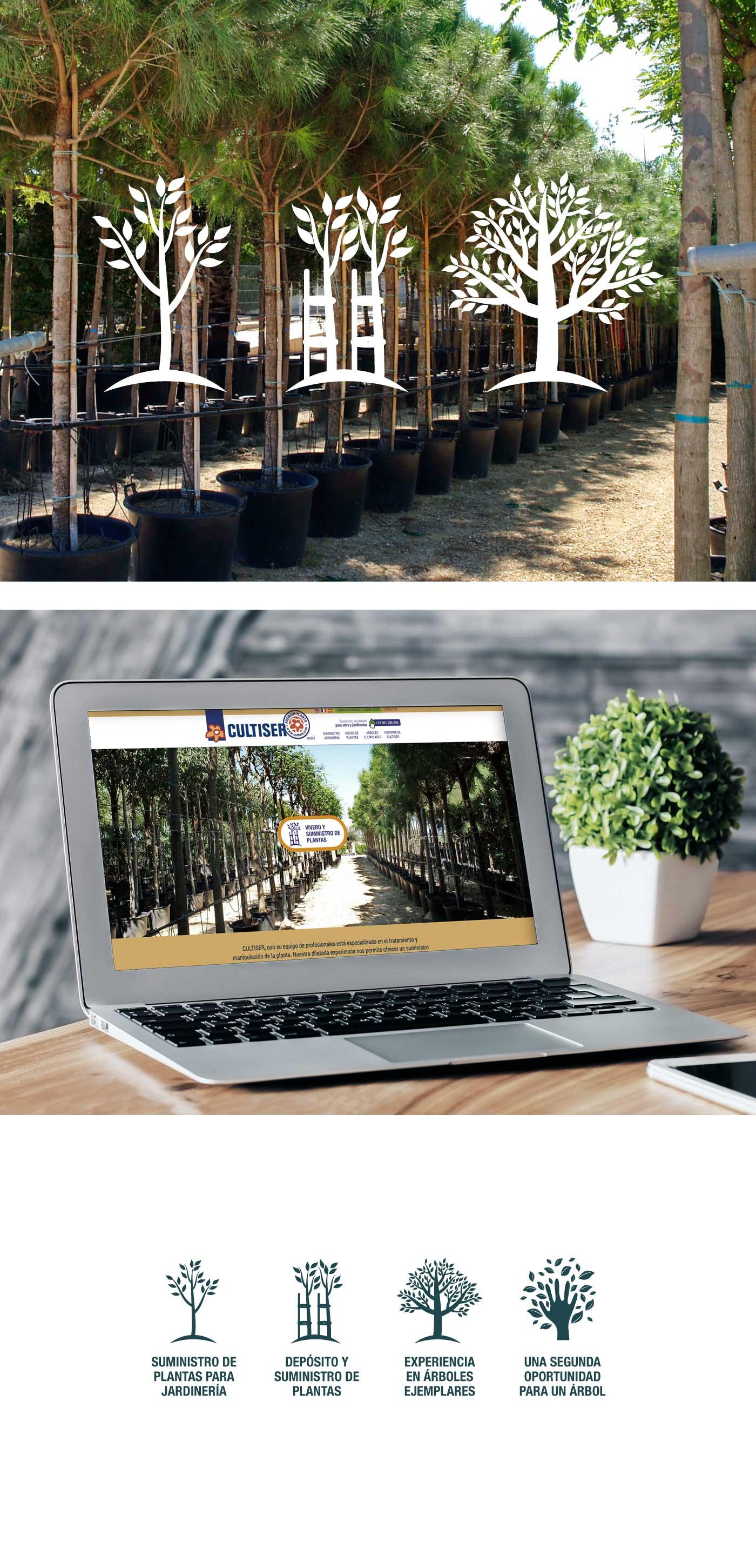 Diseño web responsive vivero valencia