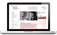 Diseño Web Empresarios ACE | DUPLO Comunicación Gráfica | Estudio de diseño gráfico, web y editorial.